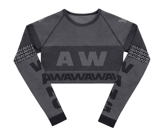 Alexander Wang pour H&M-Cropped Top Estampillé Wang $49,95